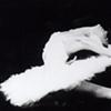 Ballet photo called Swan Lake