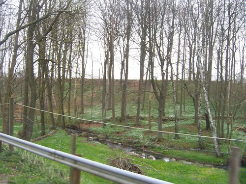 Tågarp Backroads - Skåne