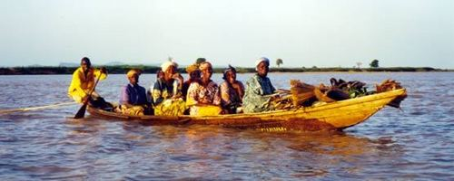 The African life sa pamamagitan ng the river