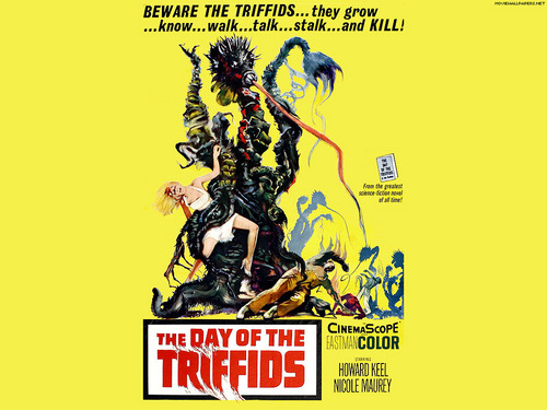 The araw Of The Triffids
