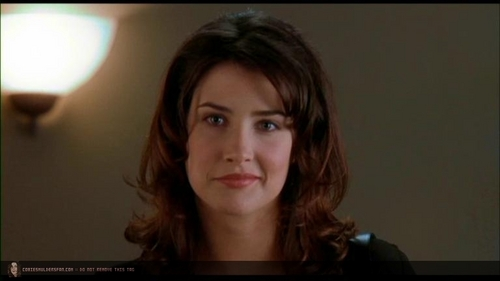 Cobie Smulders wallpaper probably containing a portrait titled The Long Weekend