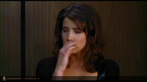 Cobie Smulders wallpaper probably containing a laptop and a portrait called The Long Weekend