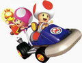 Toad and Toadette - mario-kart photo