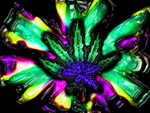 Marijuana images Trippy wallpapers HD wallpaper and background photos