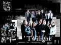twilight-series - Twilight wallpaper
