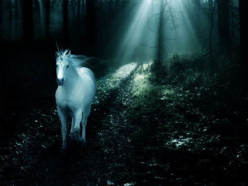 Fantasy wallpaper called Unicorn