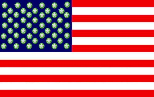 United States of fanpop Flag