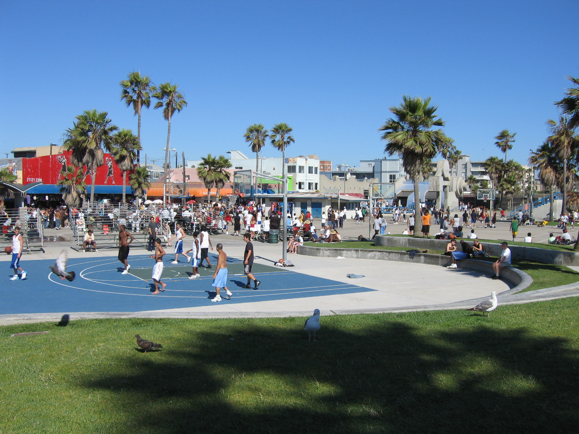 http://images1.fanpop.com/images/image_uploads/Venice-Beach-los-angeles-1105928_1920_1440.jpg