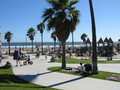 Venice Beach - los-angeles wallpaper