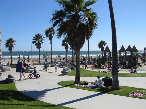 Los Angeles wallpaper entitled Venice Beach