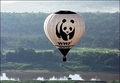 WWF hot Air Balloon