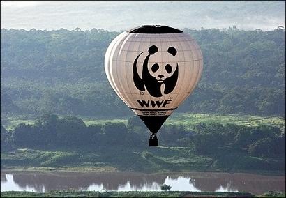 WWF hot Air Balloon