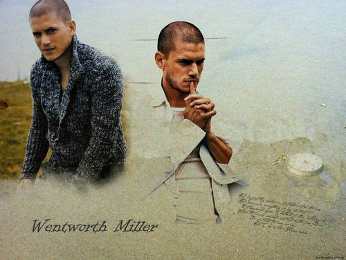 Went - wentworth-miller Wallpaper