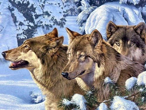 Wolves wallpaper titled Winter Wolves
