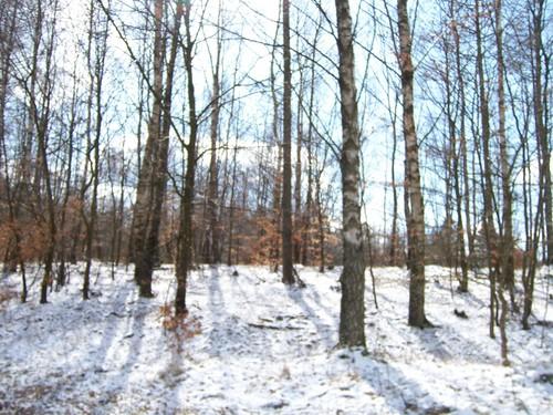Winter in Sweden 2008