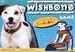 Wishbone  - wishbone icon