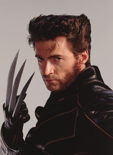 X-Men wallpaper probably with a surcoat called Wolverine