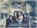 Young Frankenstein - musicals wallpaper