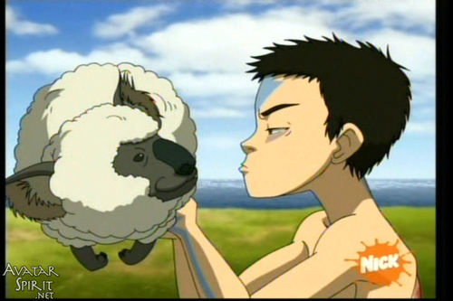 animal and aang