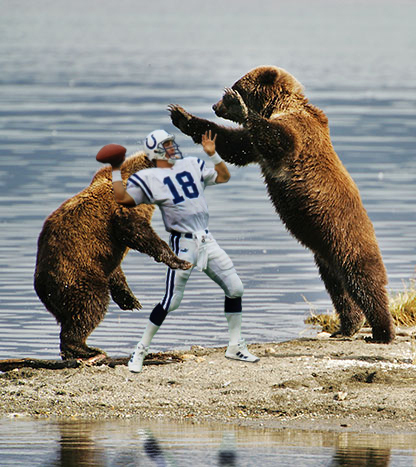 bears attacking peyton manning