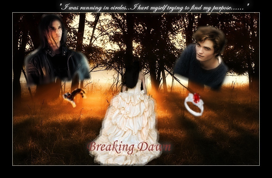 http://images1.fanpop.com/images/image_uploads/breaking-dawn-breaking-dawn-1171808_882_579.jpg