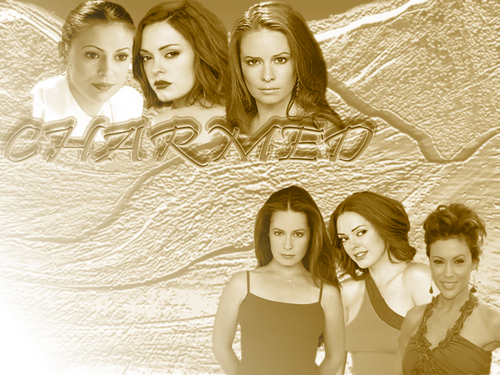Charmed wallpaper with a portrait titled charmed      7