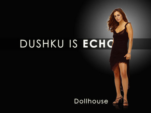 Dollhouse 壁紙 called dushku is echo