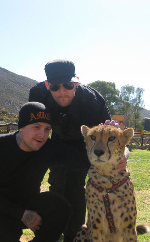 good charlotte in South Africa