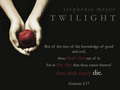 hottie - twilight-series photo