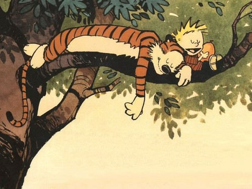 in a different tree - calvin-and-hobbes Wallpaper