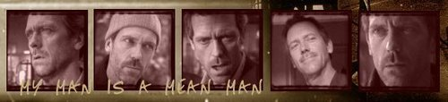 House M.D. wallpaper titled my man is a mean man_banner