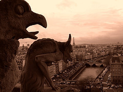 Paris wallpaper with a triceratops called paris~