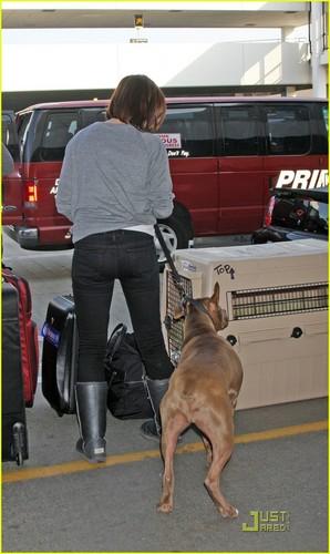 sophia & her pitbull 'patch'
