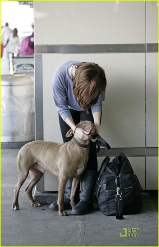sophia with her pitbull 'patch