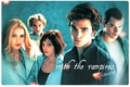 the cullens - twilight-obsessors photo