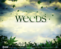 weeds wall