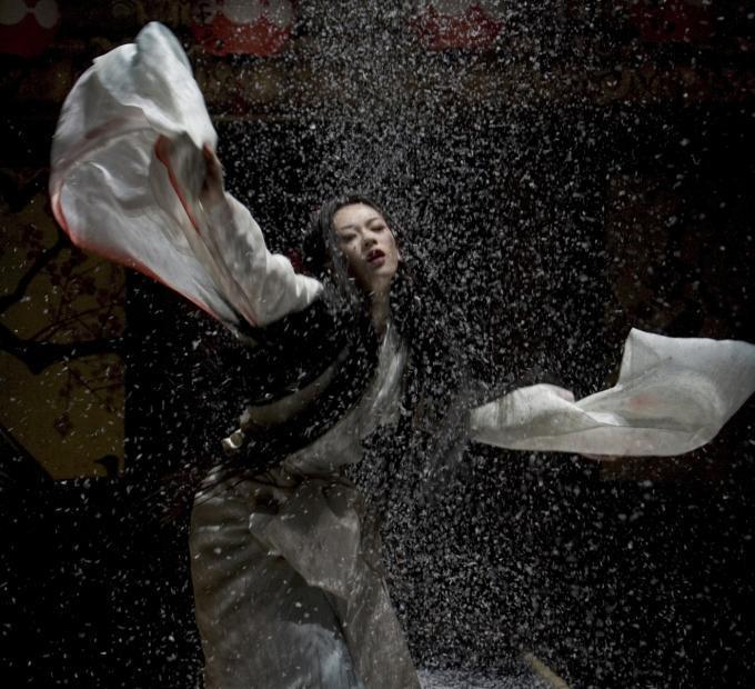 http://images1.fanpop.com/images/image_uploads/zhang-ziyi-zhang-ziyi-1151198_680_620.jpg