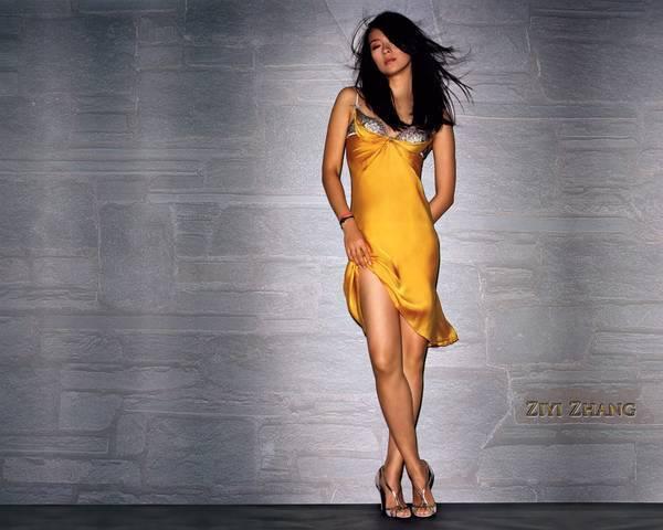 http://images1.fanpop.com/images/image_uploads/zhang-ziyi-zhang-ziyi-1151240_600_480.jpg