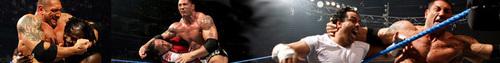 Batista banner