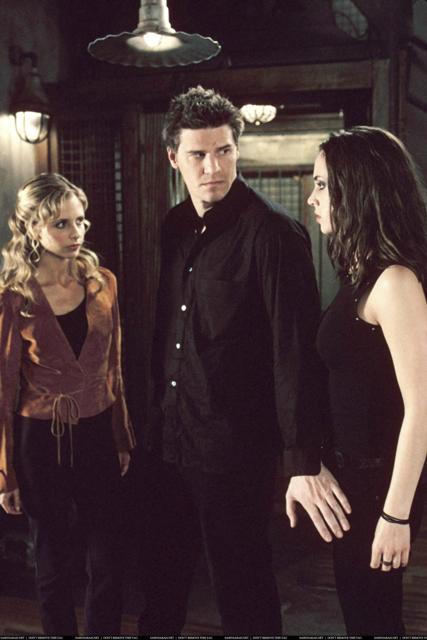 Buffy,Faith & Angel(Angel-season 1)