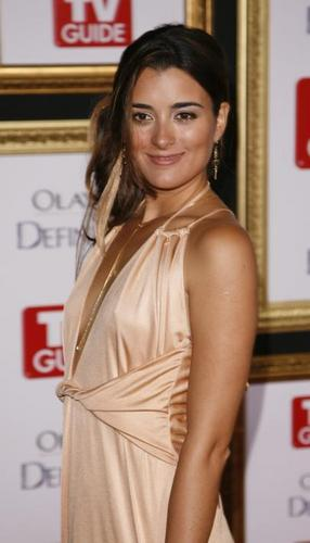 Cote de Pablo fond d'écran possibly with a cocktail dress, a dîner dress, and a portrait entitled Cote de Pablo