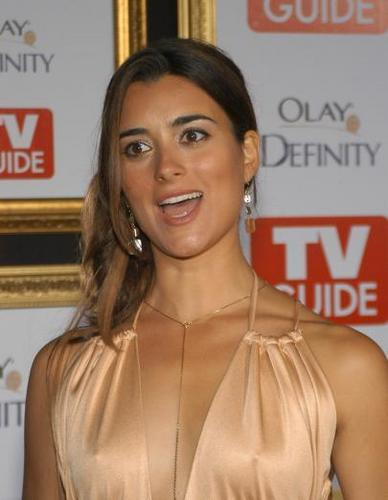 Cote De Pablo kertas dinding containing a portrait and attractiveness titled Cote de Pablo