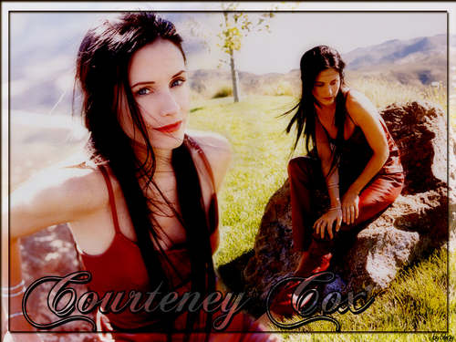 courtney cox wallpaper containing a portrait called Courteney