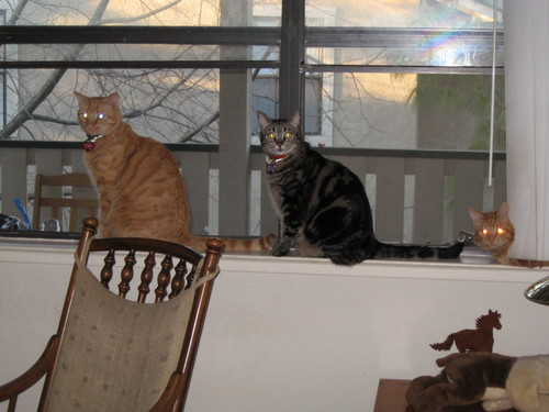 Gilbert, Isabella, Colby