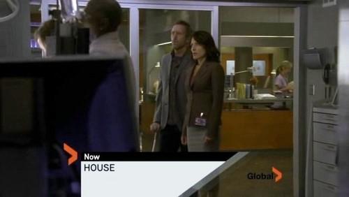House's head