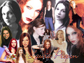 laura-prepon - Laura wallpaper