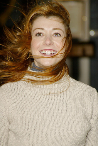 Alyson Hannigan wallpaper probably with a pullover titled Alyson