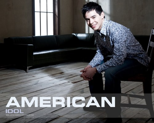 American Idol wallpaper containing a living room, a family room, and a den entitled American Idol season7