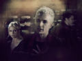 Buffy,Spike & Angel - bangel-vs-spuffy wallpaper