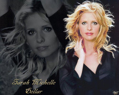 Buffy Summers wallpaper probably containing a well dressed person and a portrait called Buffy
